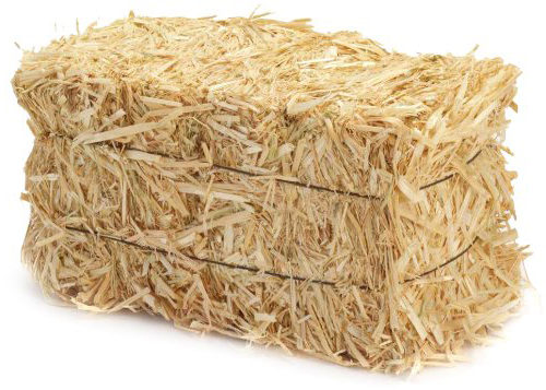 Straw Vs Hay What S The Difference Wells Brothers Pet
