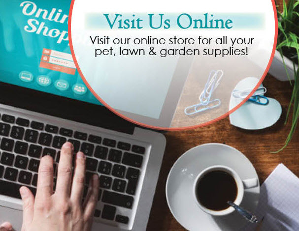 Wells Brothers On Line Store