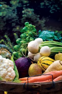 fall-garden-vegetables