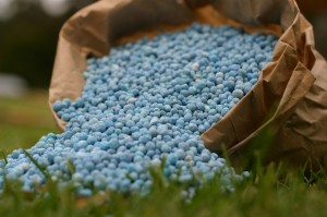 Fertilizer_2