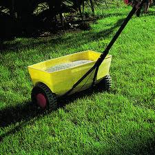 Picking The Proper Fertilizer For Your Lawn