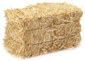 Straw vs hay, what's the difference? Find out in our Wells Brothers blog.