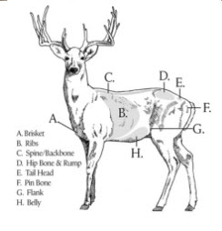 Deer Scoring from Purina website