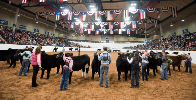 2018 2019 livestock shows wells brothers pet lawn - Garden state veterinary services ...