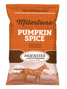 Pumpkin Spice Horse Treats