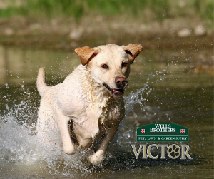Victor Hi-Pro Dog Food at Wells Brothers in Plano, TX