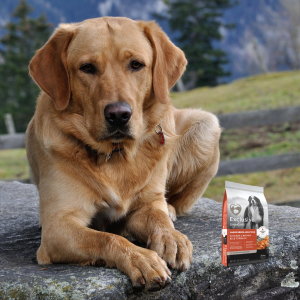 Save on Exclusive Signature Large Breed Adult Dog Formula with Comfort Care, in August at Wells Brothers!